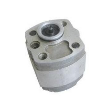IPH-4B-32-20 Гидравлический шестеренный насос