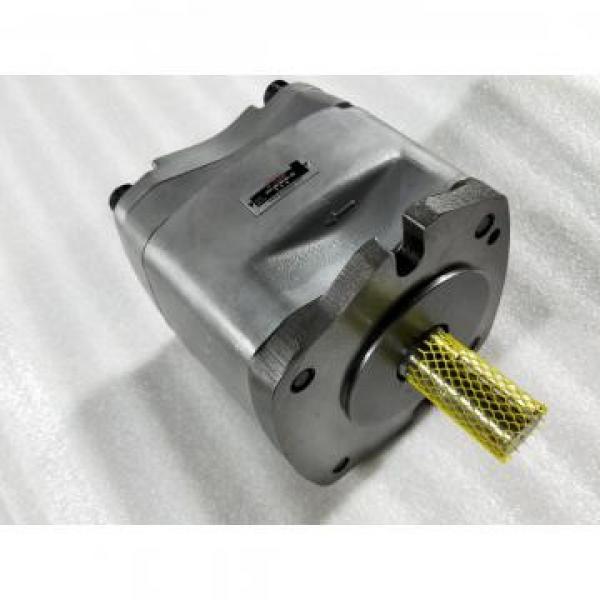 PVD-00B-15P-5G3-4982A Гидравлический поршневой насос / мотор